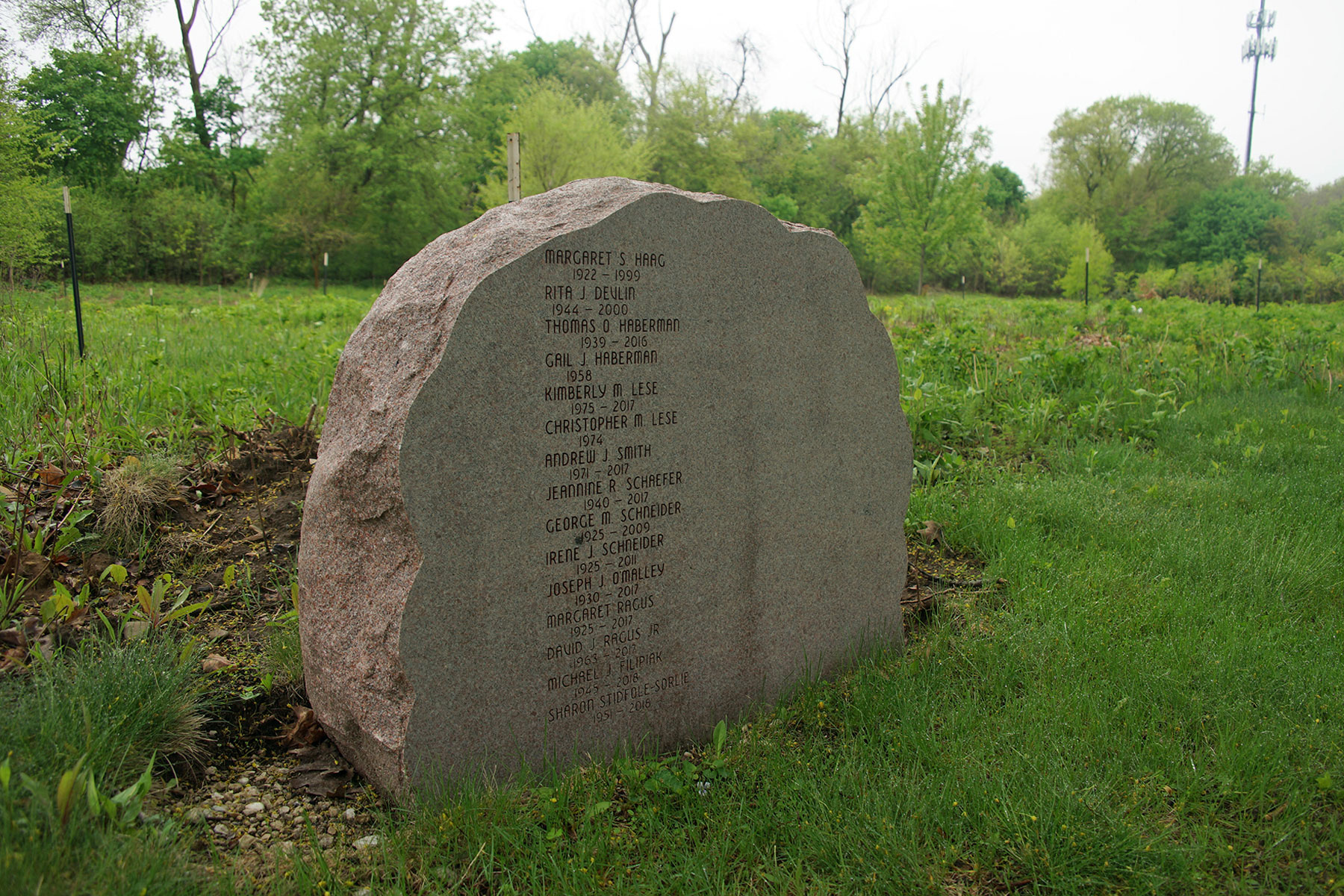 Forest Home Cemetery's Green Burial site is a traditional