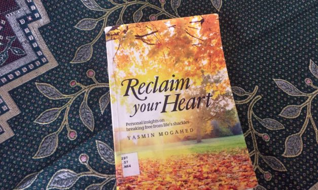 IRC Book Review: Reclaim Your Heart