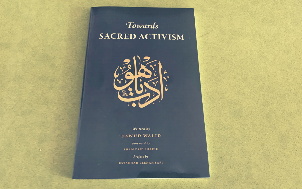 IRC Book Review: Towards Sacred Activism