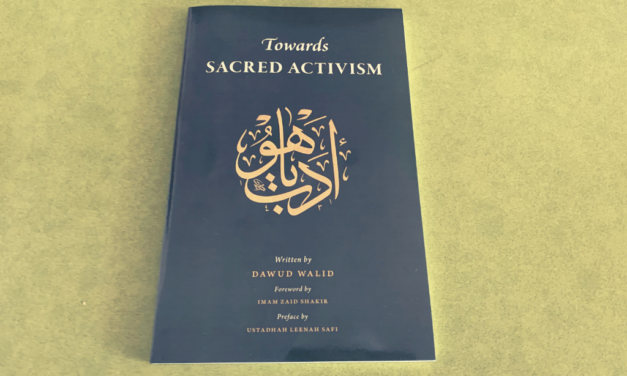 IRC Book Review: Towards Sacred Activism