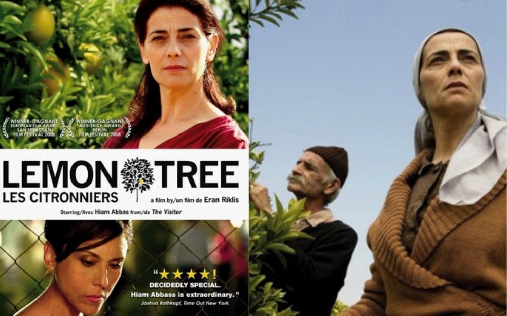 Lemon Tree by Sandy Tolan (2006 DVD)