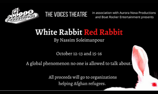 Performance of Iranian playwright's unique show raises money for Afghans relocated to Wisconsin